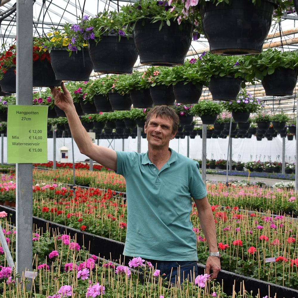 Kwekerij Jansen uit Malden zomerbloeiers